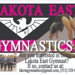 Gymnastics Information for 2019-2020 Season