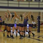 Bears Volleyball Crush Bees