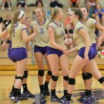 Bears' Volleyball Season Ended In District Final