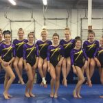 Varsity Gymnastics: Suburban League Tournament Update