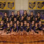 Royalton Recorder:  North Royalton Gymnastics Team back in Columbus for State Meet