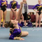 2018-19 Girls Varsity Gymnastics Team