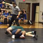 Wrestlers Compete in Area Tournaments
