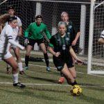 De Soto High School Girls Varsity Soccer beat Olathe North High School 1-0