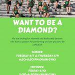 De Soto Diamonds Tryout Information