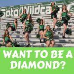 De Soto Diamonds Virtual Tryout Information