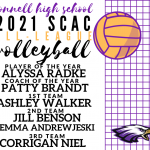 Volleyball All League