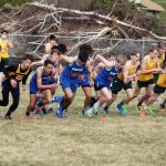 Manson Cross Country Teams Sweep League Championships