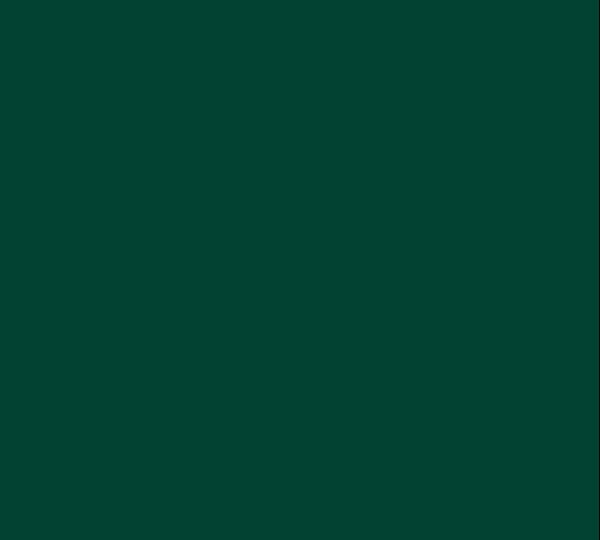 Edmonds-Woodway Warriors