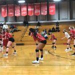 Bruin Volleyball