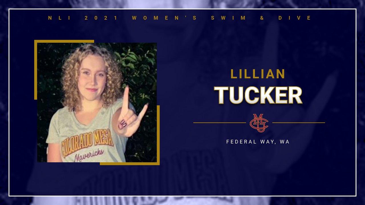 NLI for Lillian Tucker Colorado Mesa Univ