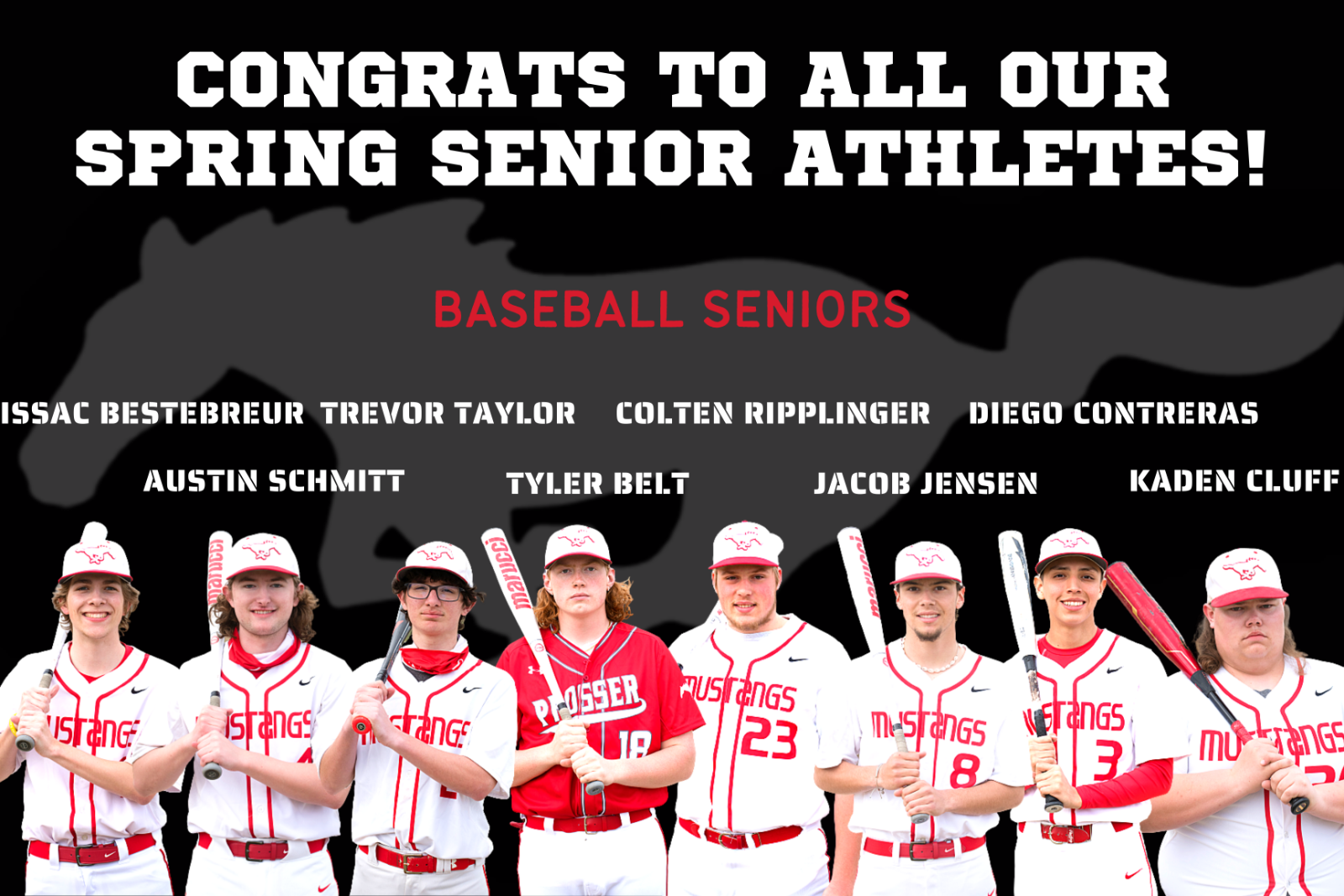 2020/2021 Baseball Seniors