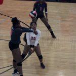 Redhawk Volleyball Remains #1 in Region