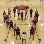 Dig Pink Night Huge Success With Sweep of Stallions