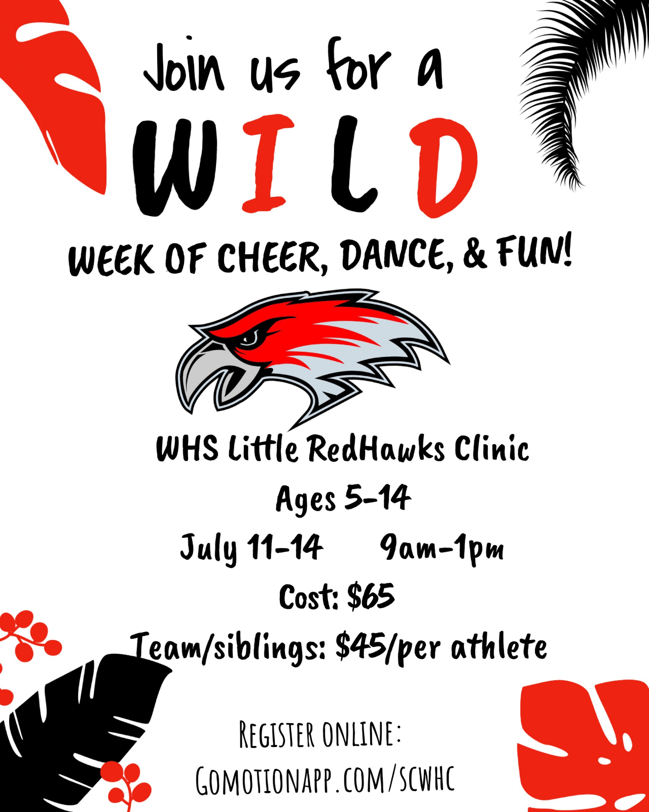 Redhawk Summer Cheer Camp 2019