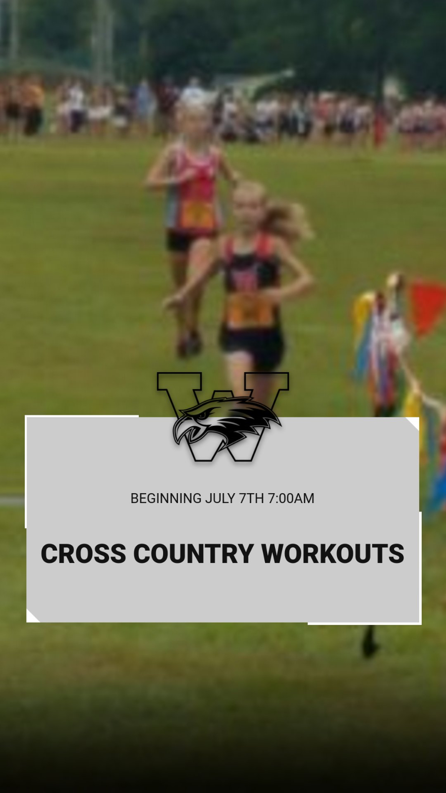 Cross Country Workouts