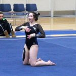 Royal Gymnasts place 4th at Big Lake Invitational