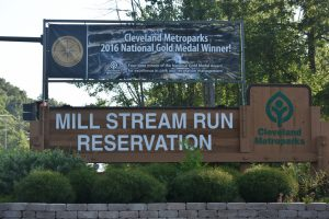 Camp Week 8.1.2017 Mill Stream Run