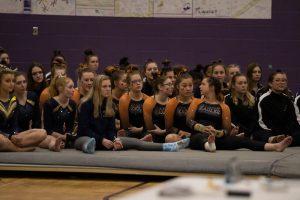 Lady EAGLES Gymnastics