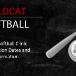 Newark Youth Softball Clinic 2019 Information