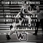 Panther Up Ended in Team District Tournament