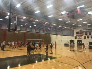 WTHS Girl's Volleyball Clinic