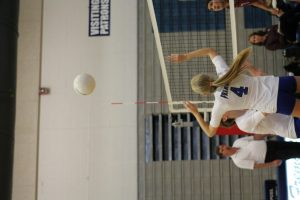 Volleyball pics