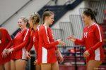 Girls Varsity Volleyball Match vs. Sylvania Northview
