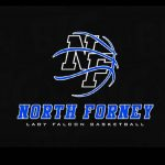 Lady Falcons Basketball FAN WEAR online store OPEN