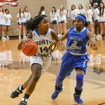 Playoff Info: Lady Falcons Area Matchup at Naaman Forest Friday at 7pm