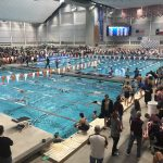 Falcon Swim and Dive Set to Begin Practice