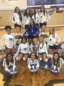 Lady Falcon Volleyball