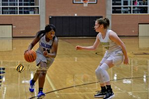 JV Girls Basketball vs. Forney High