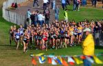 MS Cross Country Takes On Warriors and Course