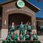 2015 Football Cheerleading Team Pictures