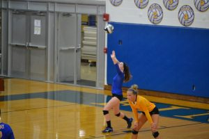 FHS Volleyball, Fall 2015