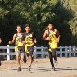 GWHS Cross Country Runs Well At WYL Cluster Meet