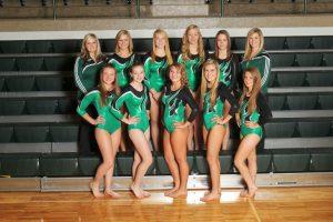 2014-15 Cloverleaf Gymnastics Team