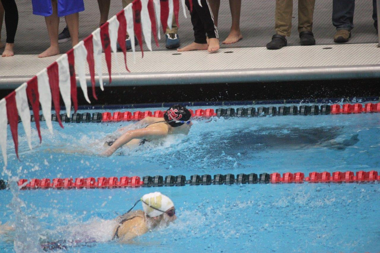 2019 MIC Swimming and Diving Results