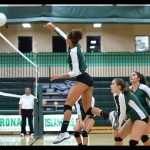 Fall Teams Named South County All Academic