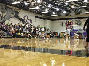 Girls V Volleyball