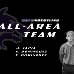 Wrestling All-Area