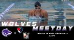 Swim Meet Day