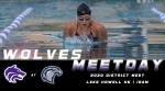 Swim District Meet