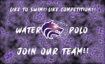 Boys Water Polo | Join Our Team!!