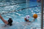 Girls Water Polo | Photo Gallery