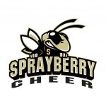 Basketball Cheerleading Tryout Results Posted!
