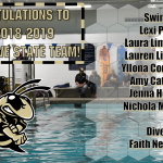 2018-2019 Swim & Dive State Team!
