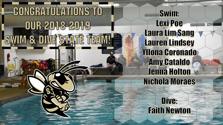 2018-2019 Swim & Dive State Team!