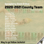 Yellow Jackets Swim & Dive County Team!